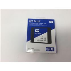 WD Blue Solid State Drive 250GB