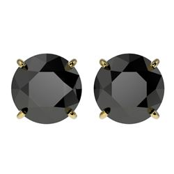 3.70 CTW Fancy Black VS Diamond Solitaire Stud Earrings 10K Yellow Gold - REF-74A5X - 36705
