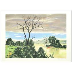 The Marsh by Carter (1904-2000)