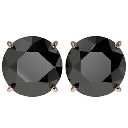 5 CTW Fancy Black VS Diamond Solitaire Stud Earrings 10K Rose Gold - REF-97N2Y - 33146