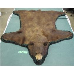 grizzly bear rug. buyer must obtain permit from Manitoba conservation.