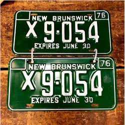 Vintage 1976 New Brunswick License Plates