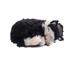 Father Figures Screen Used Plush Kitty Movie Props