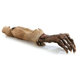 Roger Linus' (Jon Gries) Decayed Arm and Sleeve - LOST (2004 - 2010)
