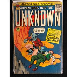 ADVENTURES INTO THE UNKNOWN #163 (ACG)