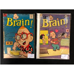 THE BRAIN COMIC BOOK LOT (#1/ #9)