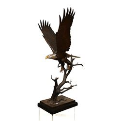 Bronze Eagle Statue Titled The Awakening by Steve Parks