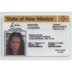 "Evangeline Lilly ""Kate"" New Mexico drivers license & ticket to Tallahassee from Lost."