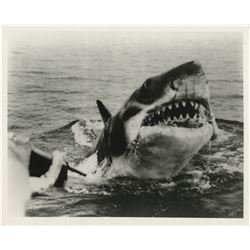 Steven Spielberg (19) photographs from Jaws.