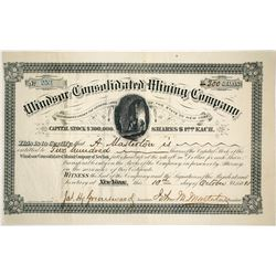 Windsor Consolidated Mining Company Stock Certificate