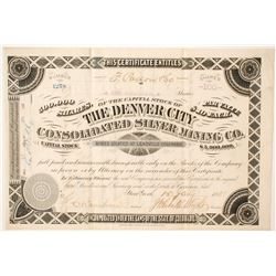 Denver City Consolidated Silver Mining Company