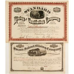 Two Maine Silver Rush Stocks: Swan's Island and Standard