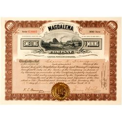 Magdalena Smelting & Mining Co. Stock Certificate, Oaxaca, Mexico 1907