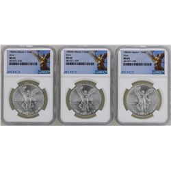 Lot of (3) 1982Mo Mexico Libertad Onza Silver Coins NGC MS65
