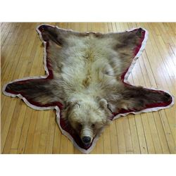 """Grizzly bear rug 75"""" long"""