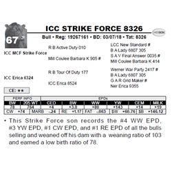 ICC STRIKE FORCE 8326