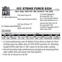 ICC STRIKE FORCE 8324