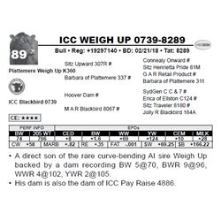 ICC WEIGH UP 0739-8289