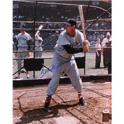 Ted Williams Signed Red Sox 16x20 Photo (PSA LOA  Williams Hologram)