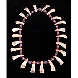 Plains Indian Trade Bead & Buffalo Tooth Necklace