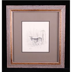 Original Ron Bailey Framed Doe Pencil Scetch