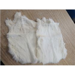 LOT OF 2 RABBIT PELTS (WHITE)