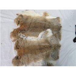 LOT OF 2 LARGE RABBIT PELTS (WHITE& BEIGE)