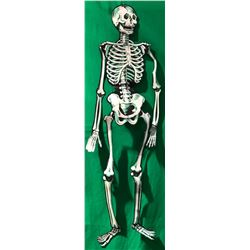 31 (Rob Zombie 2016) - Halloween Decoration from Gas Station - Lot D Skeleton