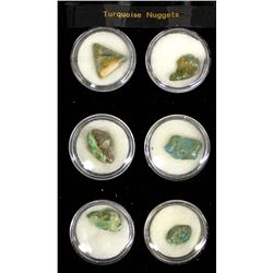 6 Turquoise Nuggets in Display Case
