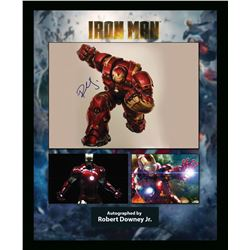 Robert Downey Jr. Signed Iron Man Artist Series