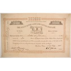 White River Land and Cattle Company Stock  (87926)