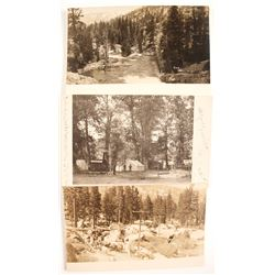 Real Photo Postcards  (88266)