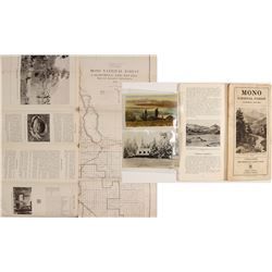 Mono Forest Map & Postcards (3 count)  (60002)