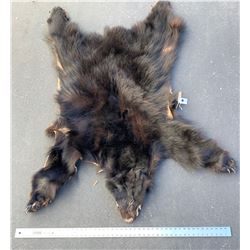 Black Bear Pelt  (86466)