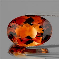 Natural Intense AAA Champagne Imperial Topaz 19x13 MM