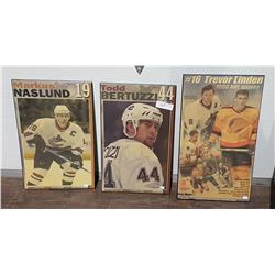 3 CANUCKS PICTURES ON BOARDS.