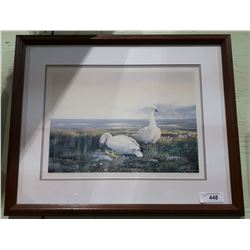 """FRAMED LIMITED EDITION PRINT BY CALBERT TITLED """"SNOW GEESE"""""""