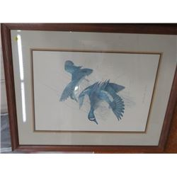 """FRAMED PRINT (BLUE WINGED TEAL-ANAS DISCORS), BY CHARLIE E MURPHY, 1977 *30""""X40*"""
