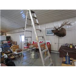 10 STEP ALUMINUM LADDER