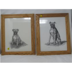"""PICTURES OF DOG 'LUCKY' (BY B. SABISTON IN '97 & '98) *14"""" X 17""""*"""