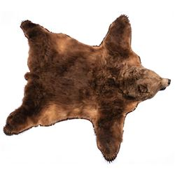Alaska Kodiak Bear Rug, 10' diagonally