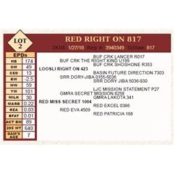 RED RIGHT ON 817
