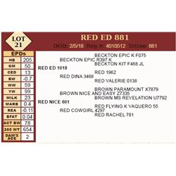 RED ED 881