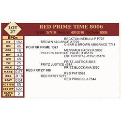 Lot - 27 - RED PRIME TIME 8006
