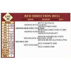 RED DIRECTION 8011