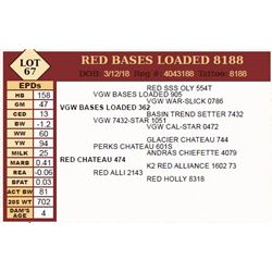 Lot - 67 - RED BASES LOADED 8188