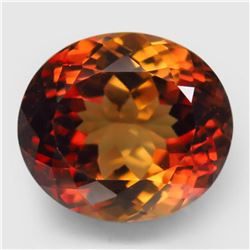 Natural AAA Champagne Imperial Topaz 14x12 MM - FL