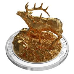 RCM .999 Fine Silver $100.00 Coin with 24kt Gold O