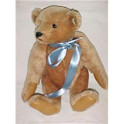 Steiff Bear 16 in.