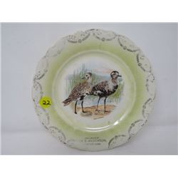 "COLLECTOR/ADVERTISING PLATE *E. ANDERSON, CANWOOD, SK* (D.E. McNICOL, 8.5"")"